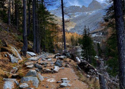 Col de la Forclaz (sentier du bisse du Trient) / Noville / Réserve naturelle des Grangettes